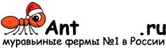 Муравьиные фермы AntFarms.ru - Мурманск